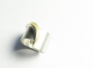 ring_manu_2.jpg